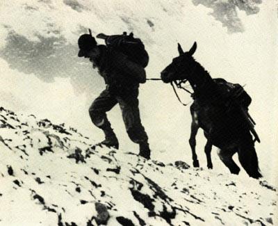 Cenni storici - Gruppo Alpini Roncegno 23451313cde5